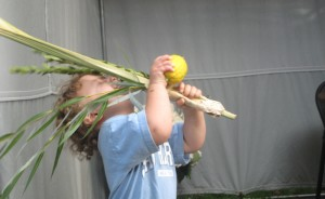 Rejoicing with the Lulav