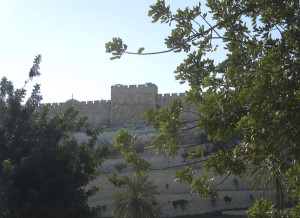 Eastern Wall where Yeshua will return …